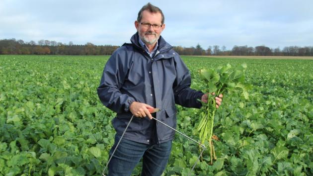 Planteavlskonsulent Knud R. Nielsen i en rapsmark, hvor bioklip viser, at N-tilførslen til foråret kan reduceres til blot 85 kg N pr. hektar.