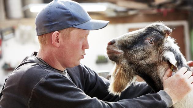 Ung landmand: Jeg behøver ikke en foderblander