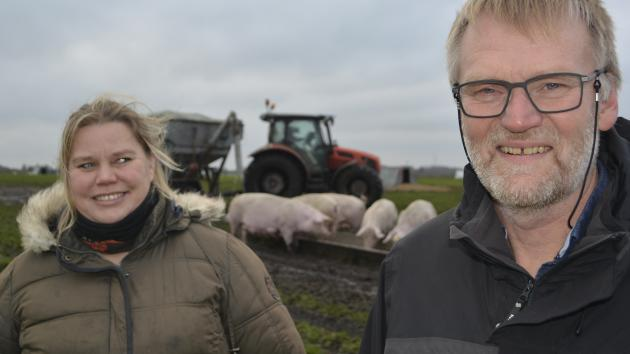 Gå hjem og pas dine grise