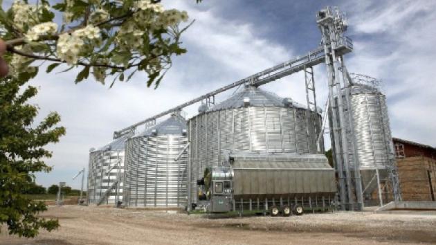 Buffersiloen til højre hindrer, at der opstår kornbunker ved korngraven. Den sikrer også, at tørreriets kapacitet kan udnyttes automatisk.