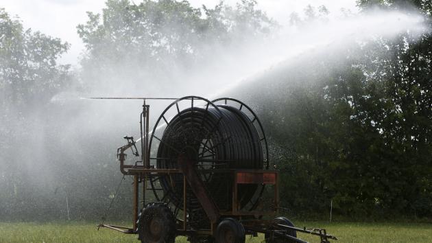 markvanding vanding