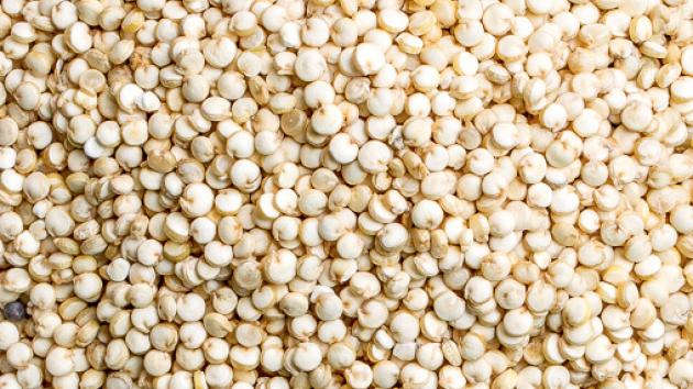 dansk quinoa