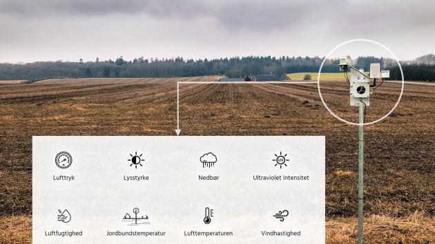 field sense danish agro