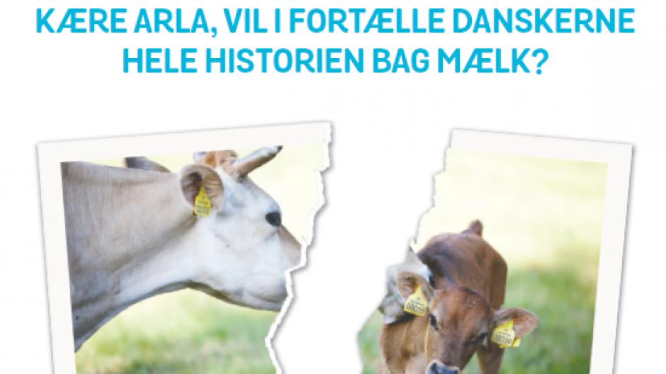 anima mælkeproduktion kritik kampagne