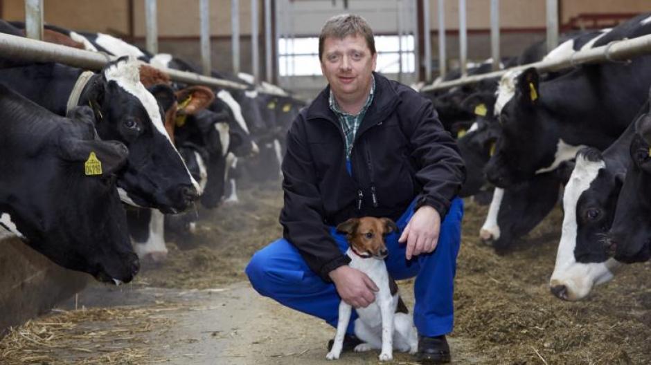 fedtprocent mælk fra koen
