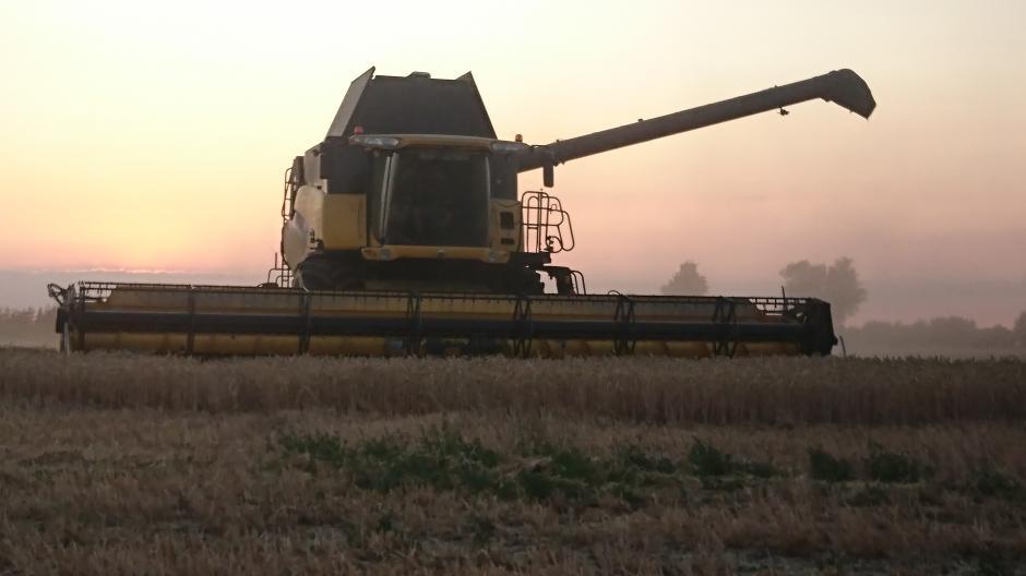 5a1f79c0e4d Lagerarbejder bruger hvert år tre ugers ferie på at høste: Her kan ...