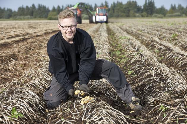 kartofler kartoffelavler ung landmand landbrug