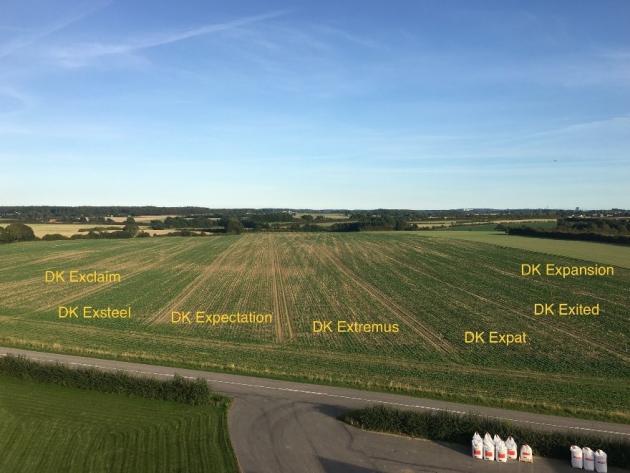 Sponsoreret Bayer Crop Science