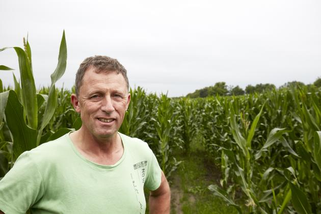 Gunnar Forum er ikke i tvivl om at den høje fordøjelighed af majssorten Sunlite bidrager væsentligt til en højere mælkeydelse.