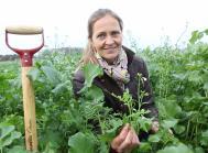 Anne Arentoft Kristensen bruger en bred vifte af værktøjer til at forbedre jordens sundhed og dermed opnå en god dyrkningssikkerhed.