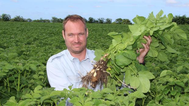 Niels Frederik Skov Jensen bruger FieldView til at lave simple forsøg i sine 110 hektar med læggekartofler.