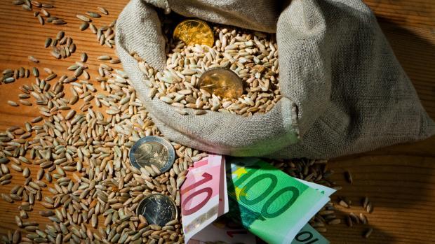 landbrugsstøtte eu støtte tilskud landbrug europa