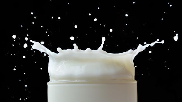 mælk skvulp