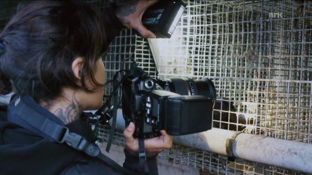 sprøjter skjult cam afrikanske ebony-film